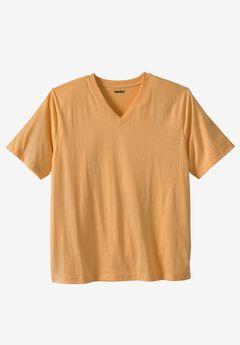 Shrink-Less™ Short Sleeve V-neck Tee,