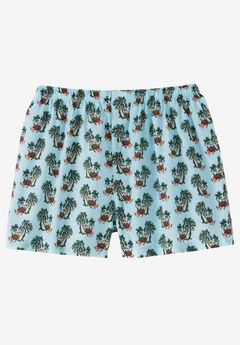 Novelty Woven Boxers,
