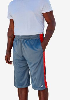 Side Stripe Performance Shorts by Russell Athletic®,