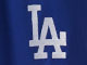 MLB® Panel Shorts , DODGERS, swatch