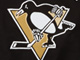 NHL® Pullover Hoodie, PENGUINS, swatch